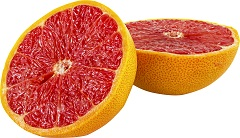 Grapefruit Seed Extract Mold Removal
